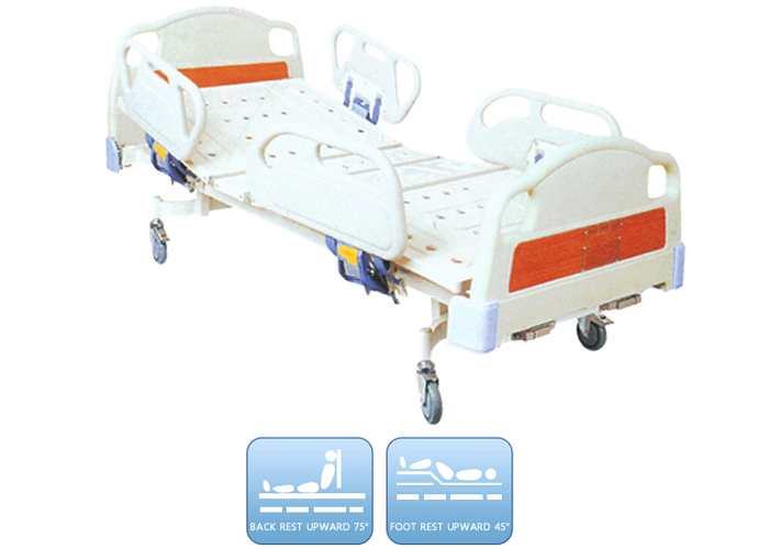 DW-BD173 Manual bed with two functions