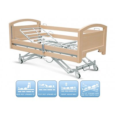 DE-BD140 Electric nursing bed with five functions